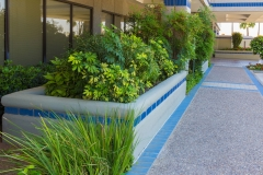 commercial-landscaping-07