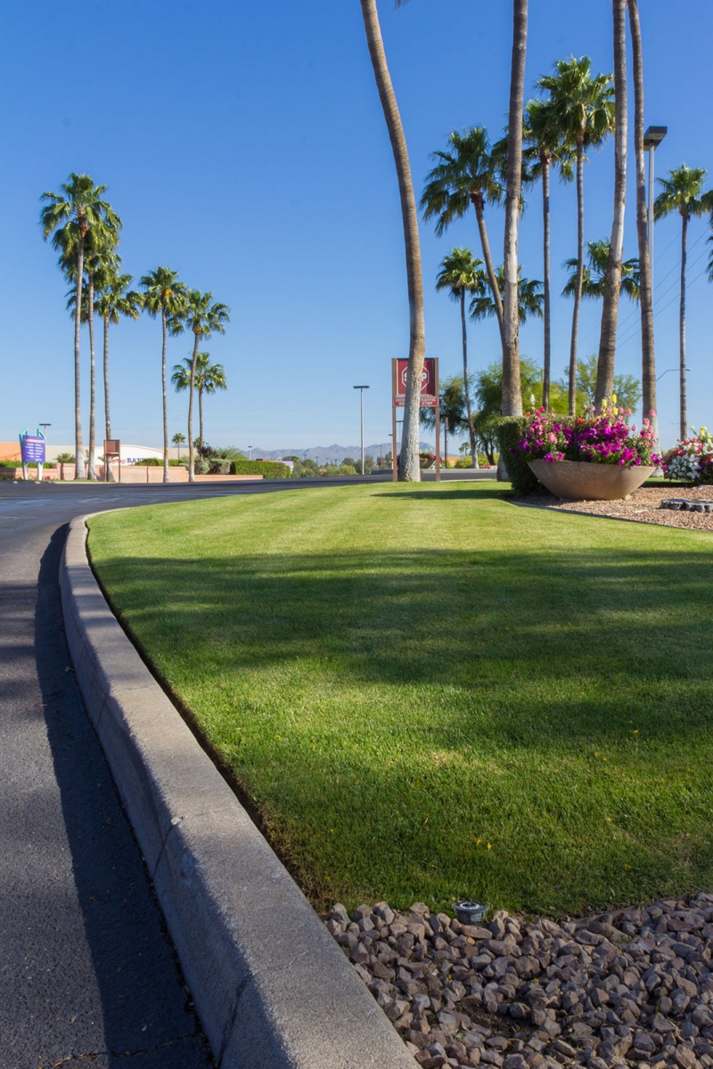 mall-landscape-maintenance-tucson14
