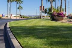 mall-landscape-maintenance-tucson14