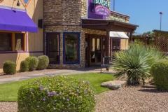 restaurant-landscape-maintenance-tucson05